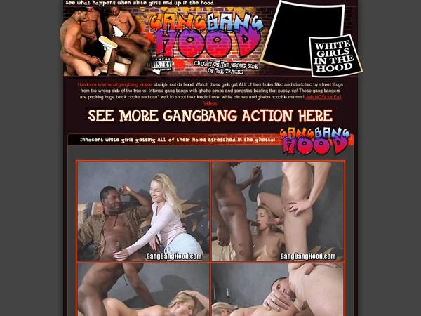Gang Bang Hood Acc Premium