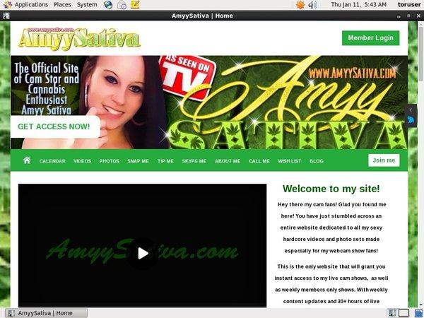 Amyysativa.com With Discount