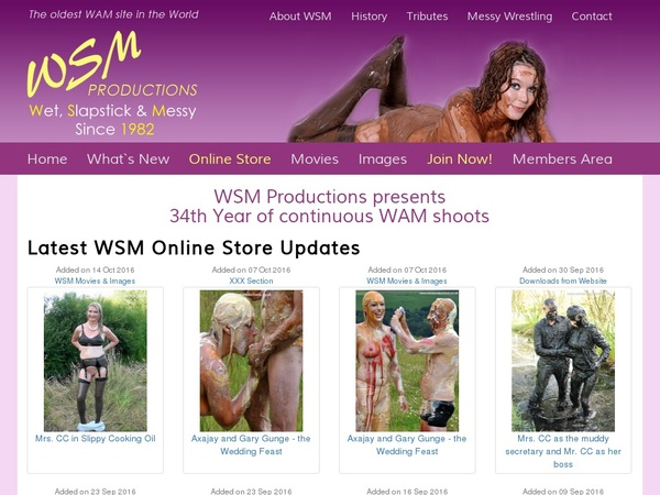 Wsmproductions Wire Payment