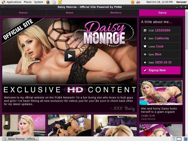 Daisy Monroe Free Username